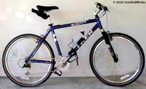 bici-300x183